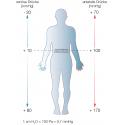 Grafik | Druckverteilung arteriell und venös in stehender Position