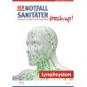Der Notfallsanitäter fresh up!   Anatomie des Lymphsystems